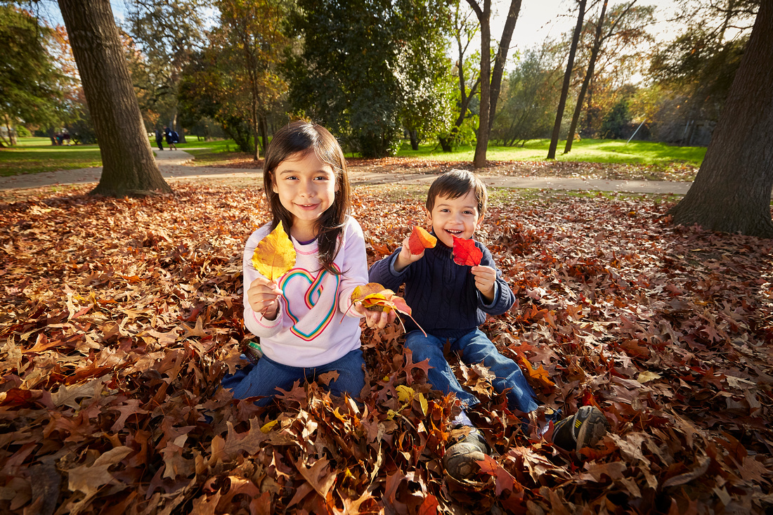 Kids-STF-Leaves-270 1