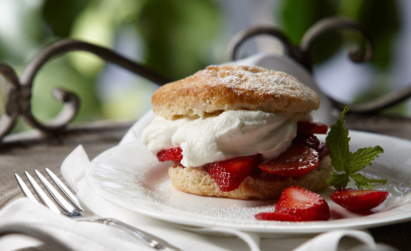 Food photography of a pastry on a plate with whipped cream and strawberries.