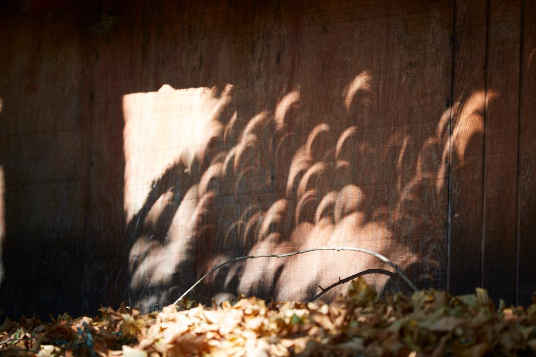 Solar Eclipse 6D  299