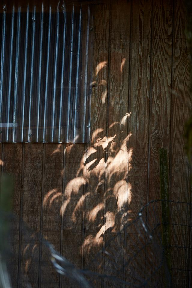 Solar Eclipse 6D  298